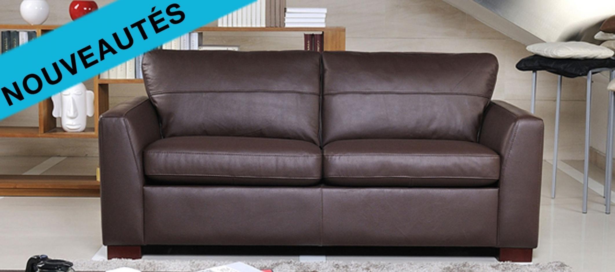 photos canap convertible 2 places cuir. Black Bedroom Furniture Sets. Home Design Ideas